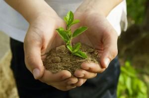 semaine-developpement-durable-villecresnes