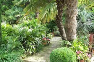 jardin-exotique-villecresnes